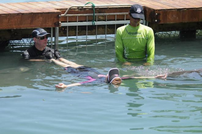 Hippo the dolphin is in the water with Krystal and his Trainer