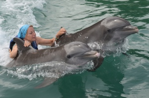 Jan swimming with the dolphins!